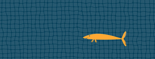 Completely unofficial, made-up migraine types: the fish net image
