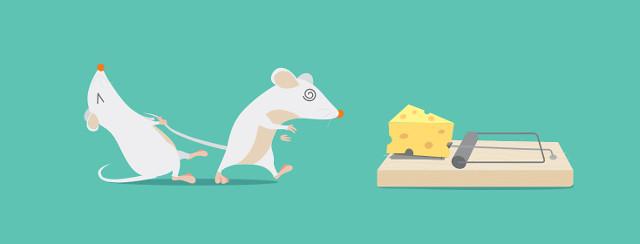 Migraines & Food: Cravings, Triggers, Comfort & Freedom image