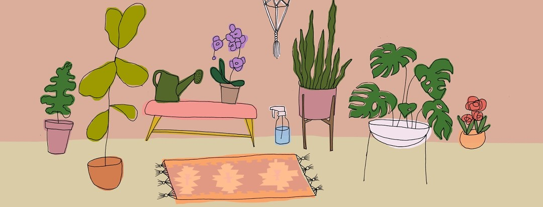 A collection of plants and planting material.