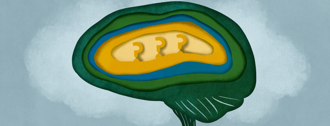 Layers of brain uncover question marks in cloud