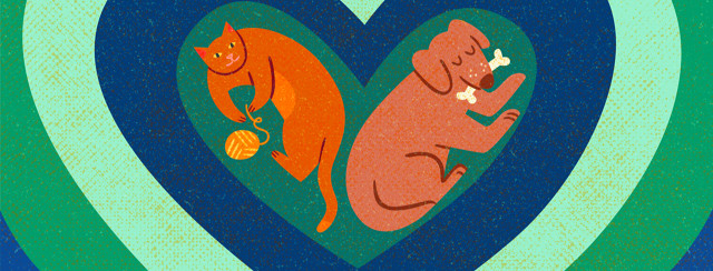 Cat with yarn ball and dog with bone in mouth cuddle in nested hearts